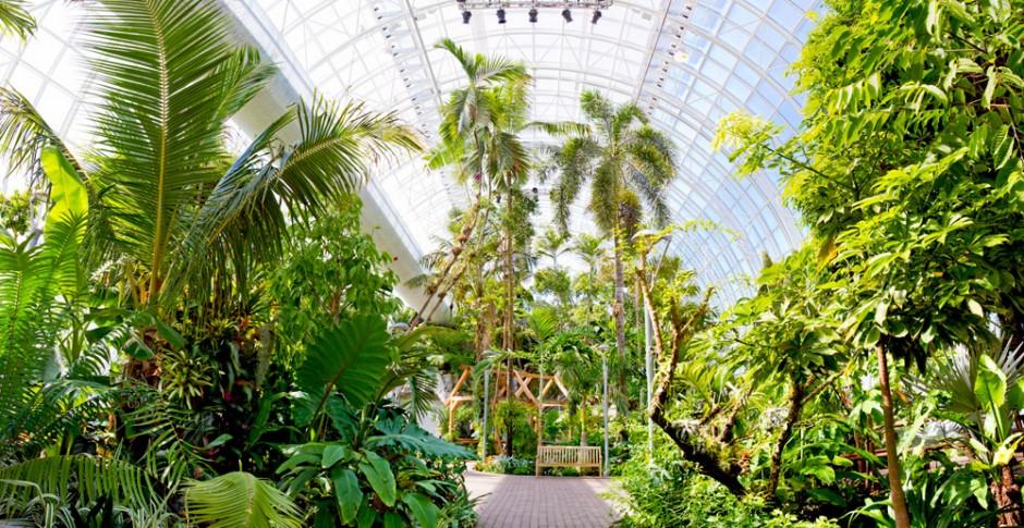 Myriad Botanical Gardens 1 ...
